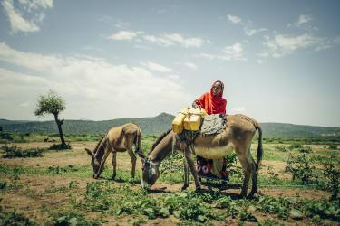 Woman with livestock in ethiopia