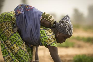 A woman in niger bends to tend a crop while carrying her sleeping baby strapped to her back