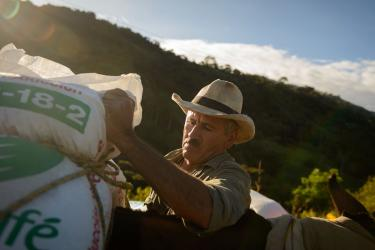 Man piling full bags from his crop in colombia