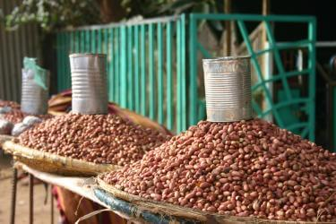 Piles of beans in ethiopia with metal cans on top of them