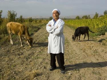 Man standing in farm field with livestock