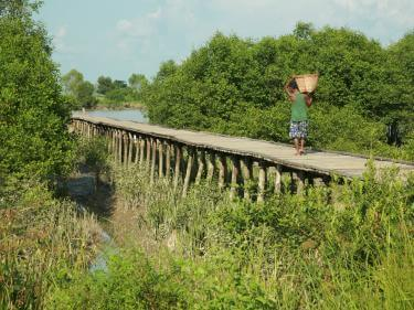 Myanmar rural scene, with an individual walking on a foot bridge.