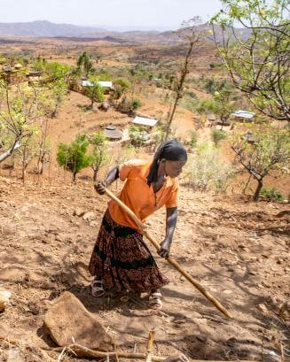 woman hoeing her crops in Ethiopia